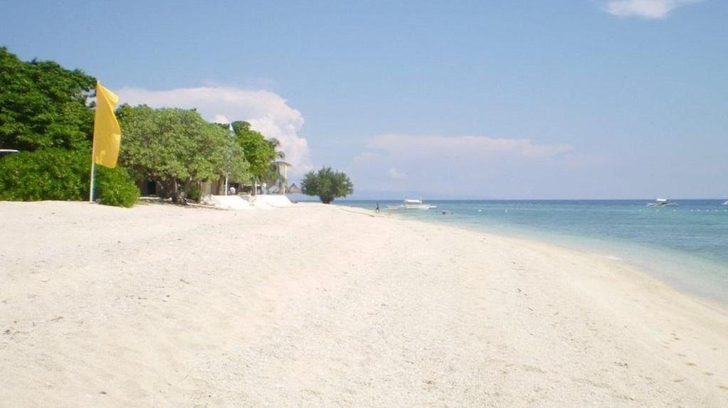 Bohol Tour to Balicasag Island
