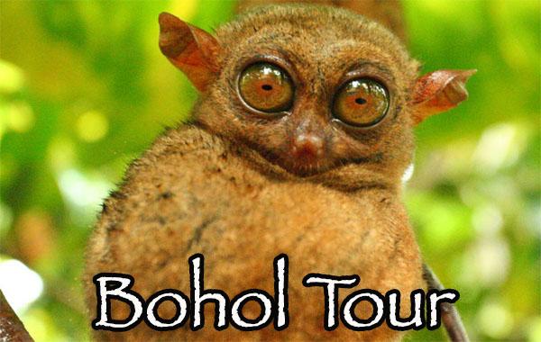 Bohol tout from Cebu